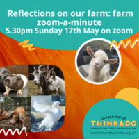 May 17: Kentish Town City Farm