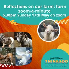 May 17: Kentish Town City Farm