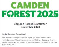 Image of the Camden Forest November 2020 Newsletter