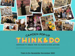 Image of the November 2020 Newsletter